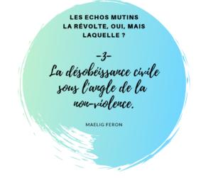 Chronique : Les échos mutins -3-  La révolte, oui, mais laquelle ?